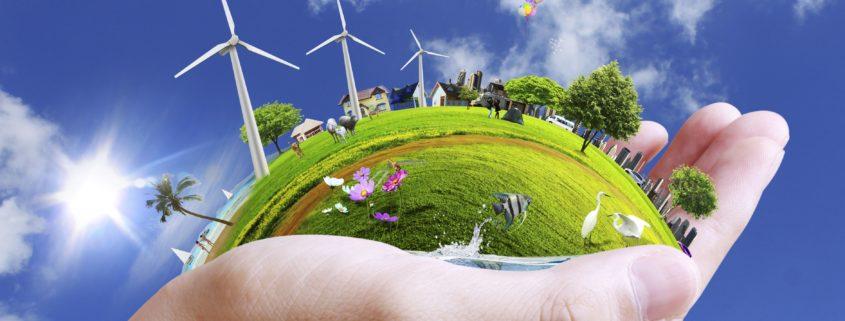 Sustentabilidade: a escolha do cliente mo